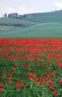Last Minute Spring - Summer in Umbria: Norcia