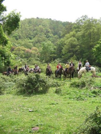 Passeggiate a cavallo nella campagna laziale