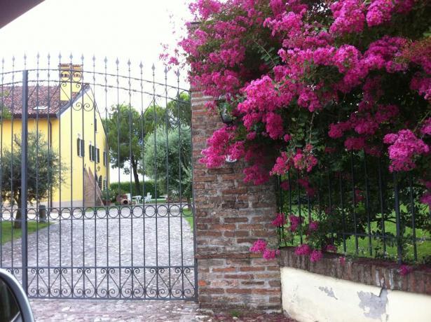Agriturismo con enorme spazio verde a Mantova