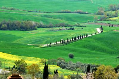 Last Minute holiday in Tuscany, Find Accommodation