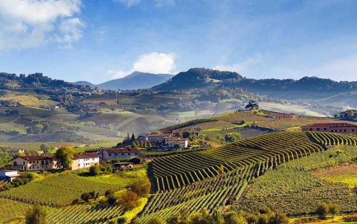 Hotel ideale per escursioni Langhe e Monferrato