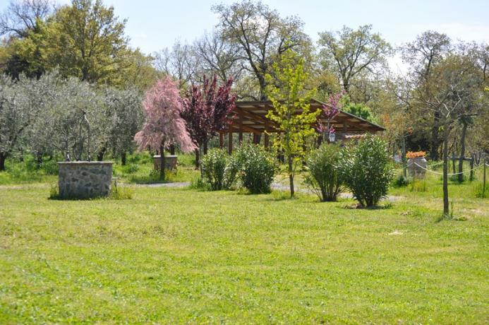 Giardino Esterno - Casale con 12 Appartamenti indipendenti