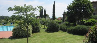 Piscina nel giardino