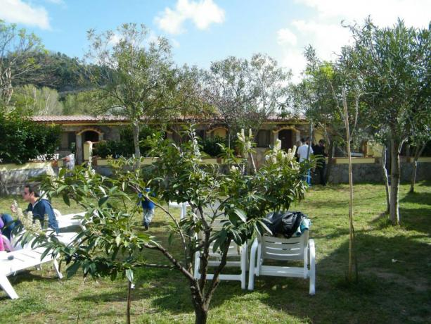 Villaggio a palinuro con spazio verde e ombra