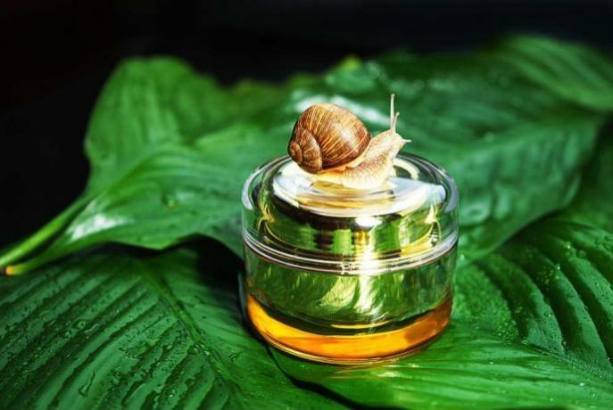 IMPERYA: prodotti anti-age BAVA-LUMACA
