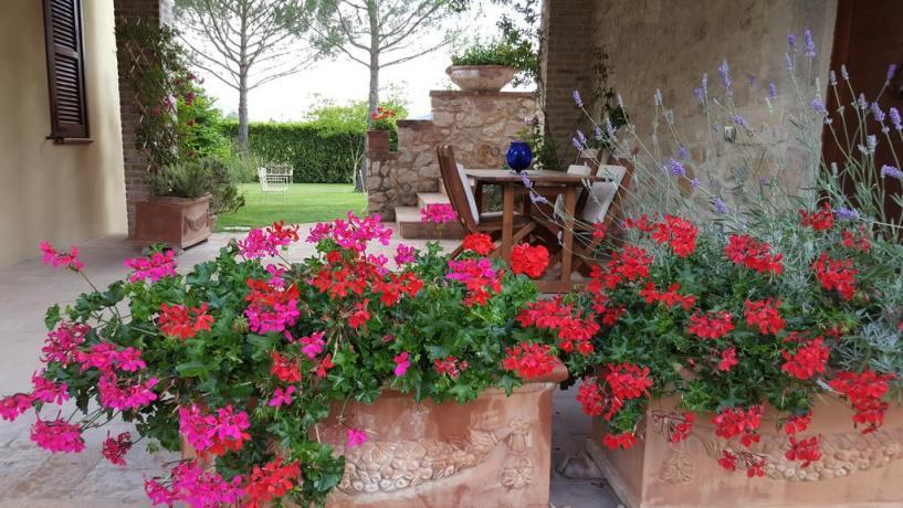 Fiori nel giardino dell'agriturismo a Ferentillo