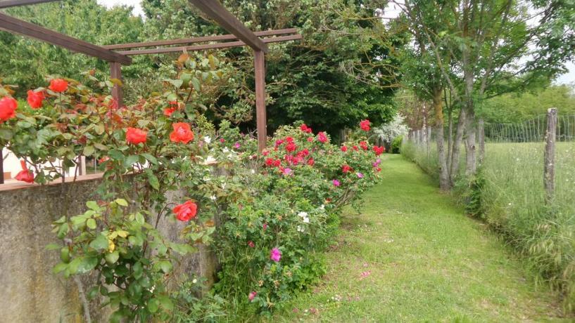 Casolare tipico Umbro con grande giardino