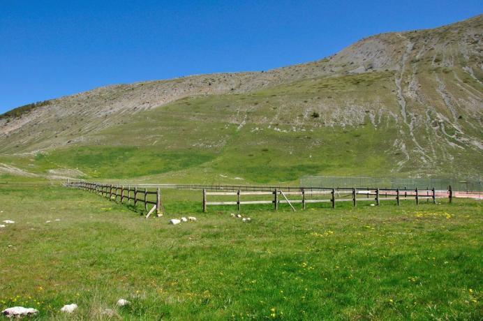 Campi sportivi in erba naturale in Abruzzo Ritiro-Calcio