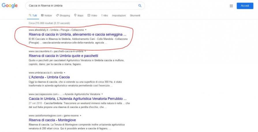 Servizio Prima Posizione su Google: Riserva-Caccia-Umbria