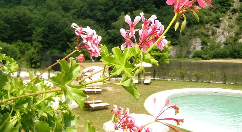 Fioritura e scorcio della piscina