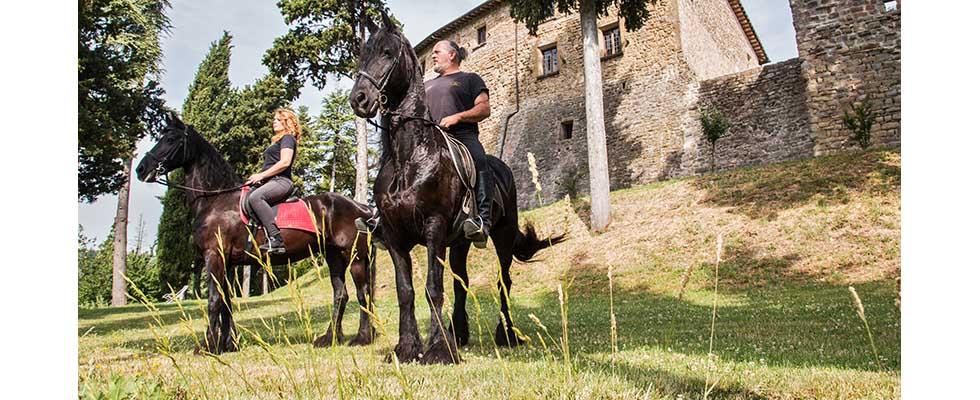 escursioni a cavallo nel verde di gubbio