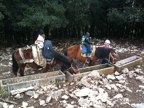 Escursioni a Cavallo vicino Sabaudia
