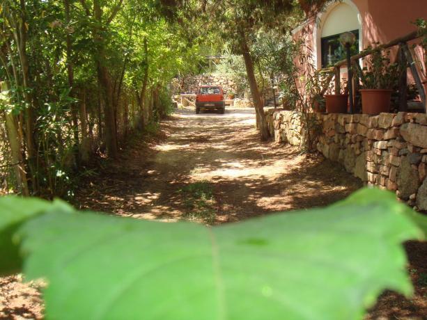 Agriturismo nel verde Sardo vicino Tortolì