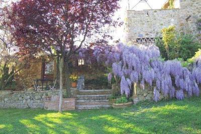 Manutenzione piante ornamentali per giardini privati e pubblici giardinieri e potatori in umbria - Giardini privati foto ...