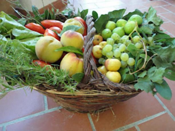 Cesto frutta e verdura B&B Todi