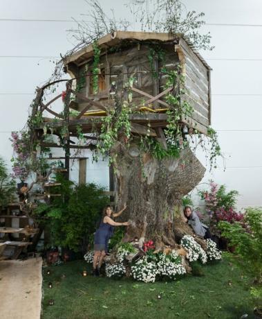 treehouse chalet mountain case sull albero antico