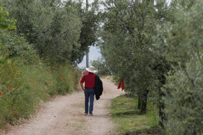 Passeggiate con degustazioni in Umbria