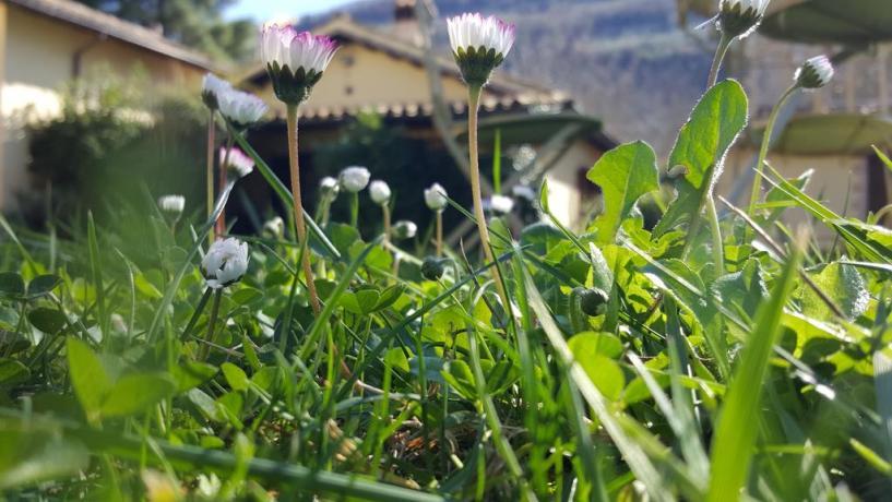 Agriturismo con giardino a Ferentillo vicino Terni