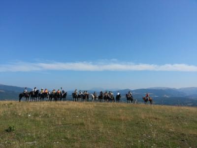 Passeggiate a cavallo in montagna
