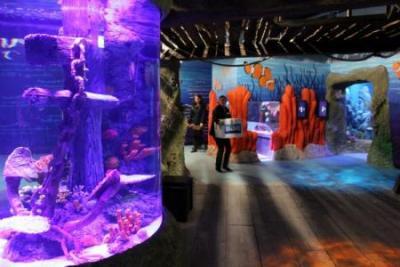 Visit the Marine-park Sealife in Jesolo, Venice
