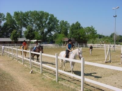 Scuola ippica in umbria scuola di equitazione a foligno for Piccoli progetti di case toscane
