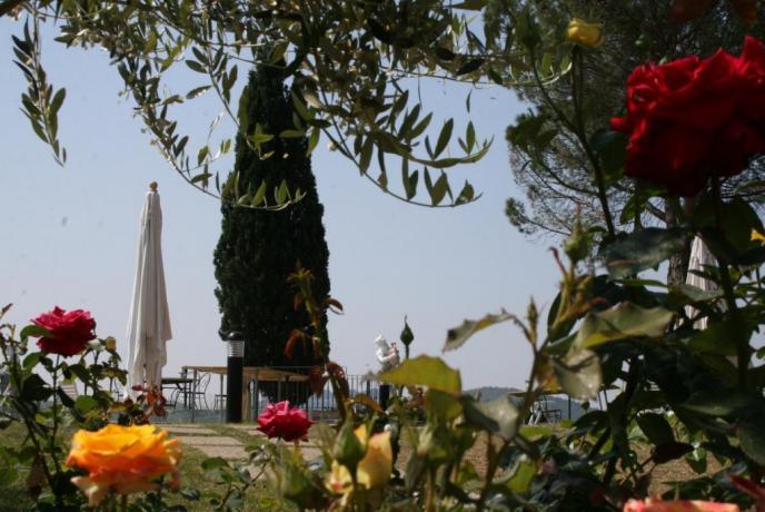 Giardino Piscina Spa e ristorante in Relais Umbria