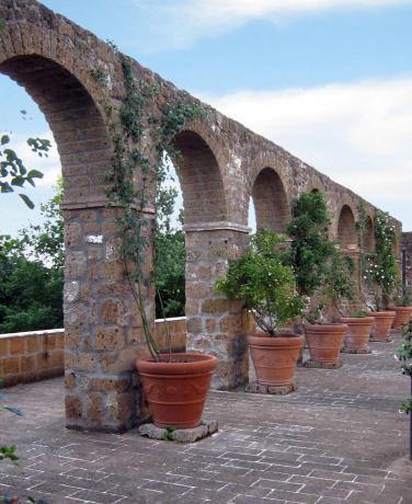 Country House tra Roma e Viterbo