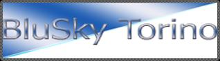 ingrosso-cellulari-vendita-online-torino