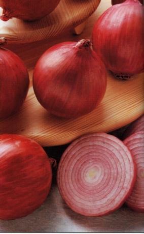 Cannara red onions