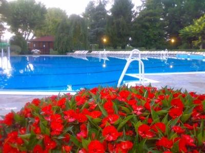 Mantenimento pulizia acque piscine estive