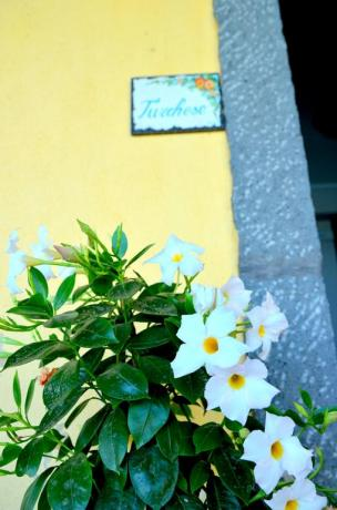 Ingresso Camera Turchese B&B Santa Venerina