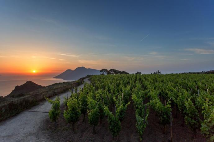 Relais 3km dal mare produzione vino Lipari