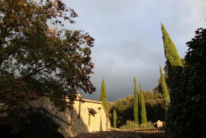 B&B vicino Acquasparta con giardino