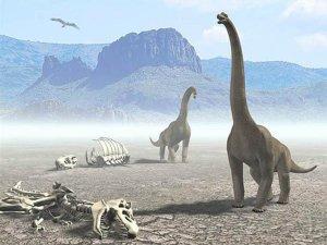 estinsione dei dinosauri