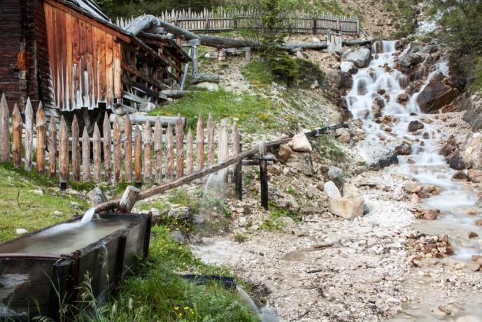 Appartamenti immersi nella natura Trentina a Bolzano