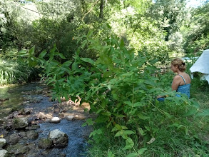 giardino sul fiume relax space