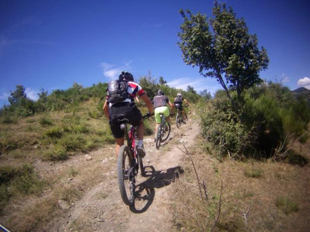 Escursioni guidate in mountain-bike e-mtb nella Valtaro
