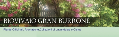 Biovivaio Gran Burrone