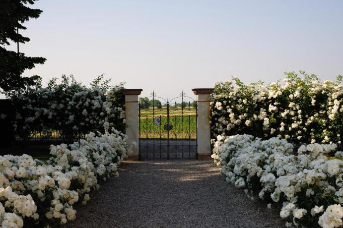 Agriturismo Pordenone con ampio giardino + parcheggio privato
