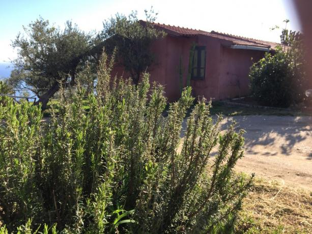 Relax in Sicilia Agriturismo a Marina di Patti