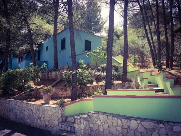 appartamenti con piccolo cortile nel Gargano