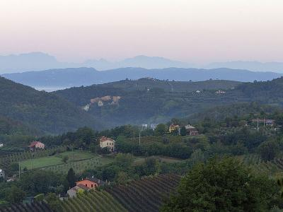 Parco, Colli Euganei, vista dal giardino
