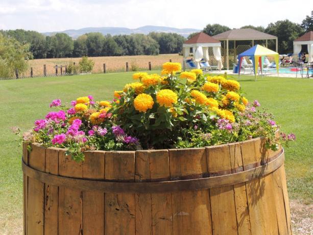 Ampio giardino e piscina agriturismo Umbria