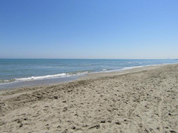 Soggiornare di fronte al mare di MilanoMarittima