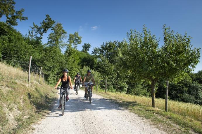Possibilità di escursioni in Mountain Bike Umbria Gubbio