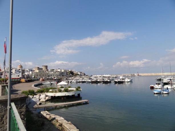 Porto dell'Isola di Ischia