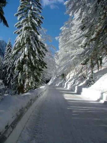Skiing, Trekking and Snowboarding in Italy