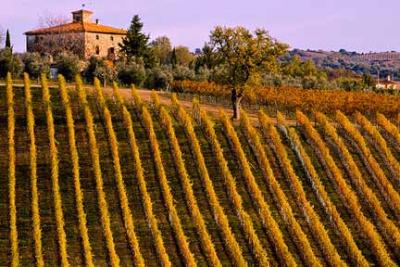 Hotels with View over the Tuscany Wineyards