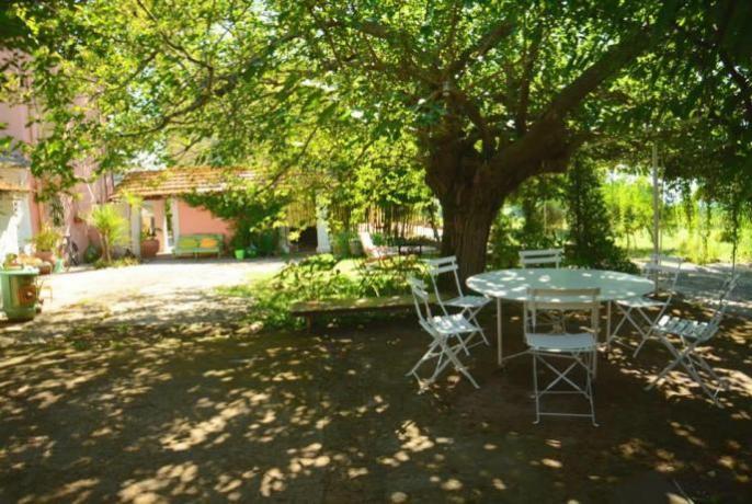 Area esterna B&B vicino Roma ideale per relax