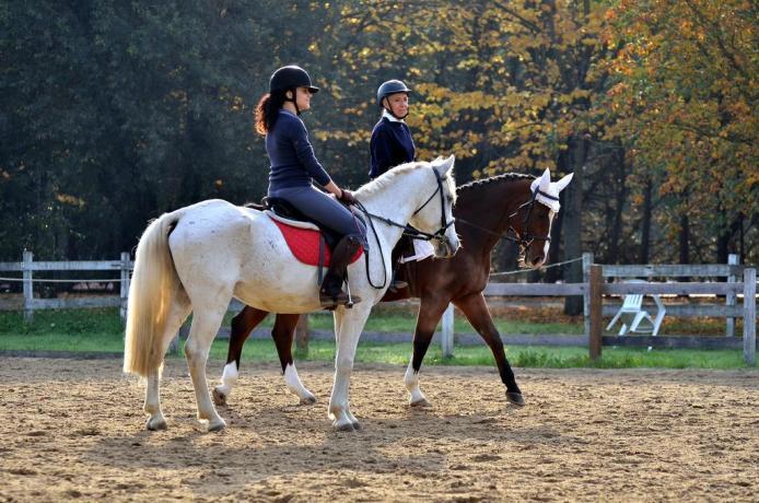 Scuola Equitazione in Agriturismo Perugia